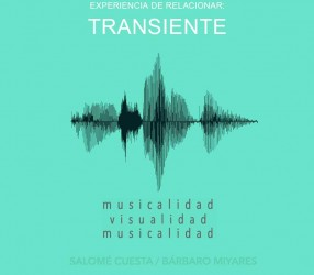 ER_transiente_Disco